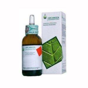 VACCINIUM VITIS BIO GEMMODERIVATO - 50 ml.