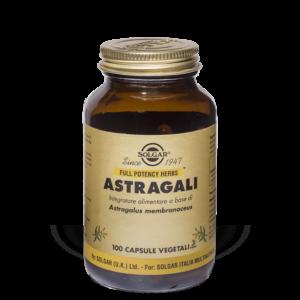 Astragali - 100 capsule vegetali