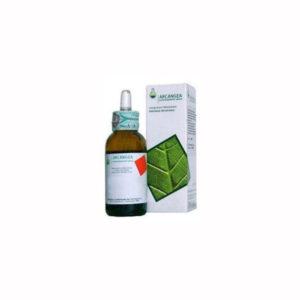 Olea europea gemmoderivato - 50 ml